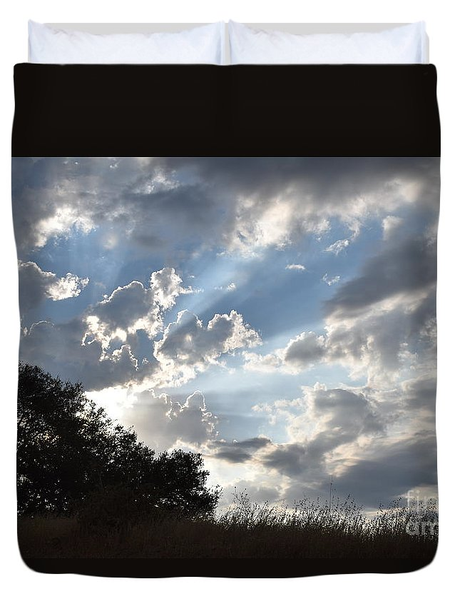 Landscape Duvet Cover featuring the photograph Back Lighting by Suzanne Leonard