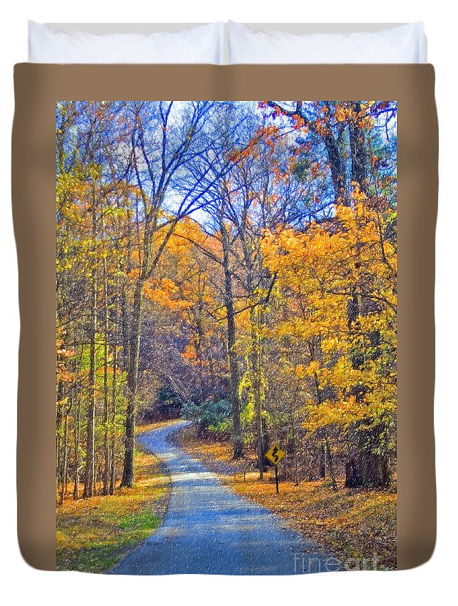 Back Road Fall Colors Foliage Revolutionary Civil War Road Valley Forge Pa Duvet Cover featuring the photograph Back Road Fall Foliage by David Zanzinger