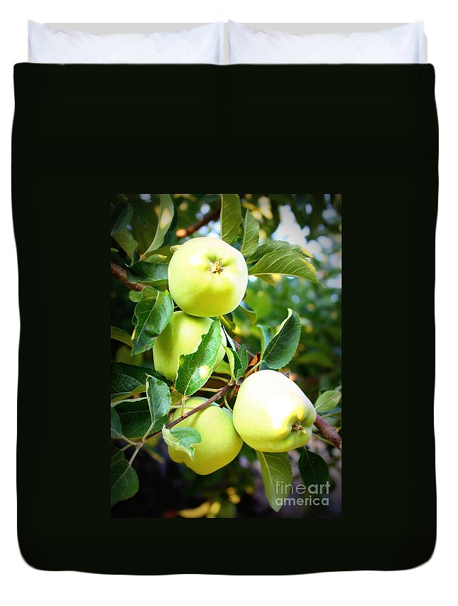 Food Duvet Cover featuring the photograph Backyard Garden Series- Golden Delicious Apples by Carol Groenen