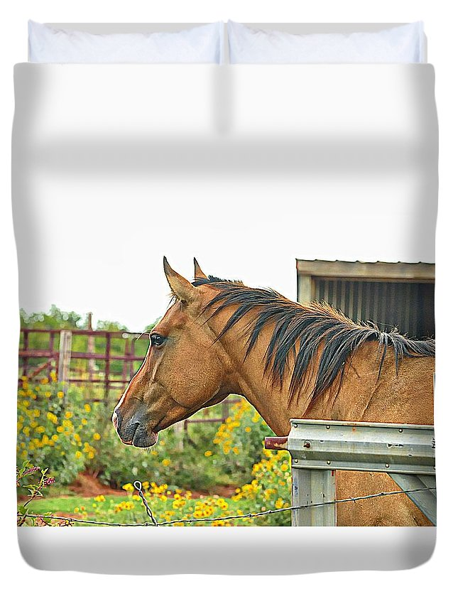 Horse Duvet Cover featuring the photograph Badger by Diana Cannon