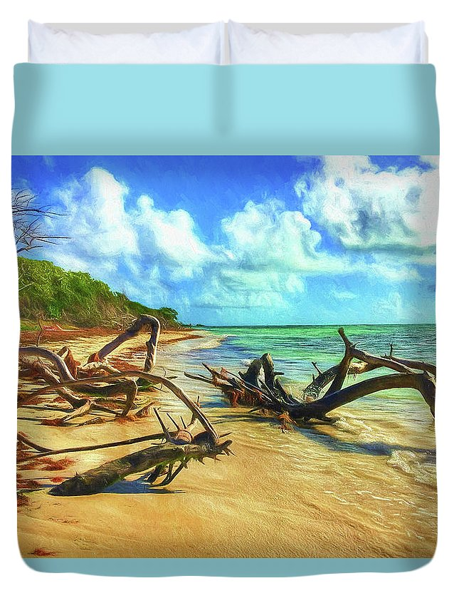 Beach Duvet Cover featuring the photograph Bahia Honda State Park by Jane Fiala