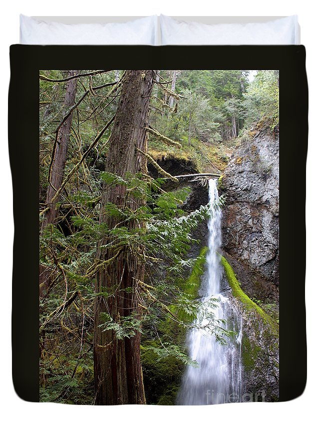 Landscape Duvet Cover featuring the photograph Balance In Nature by Carol Groenen