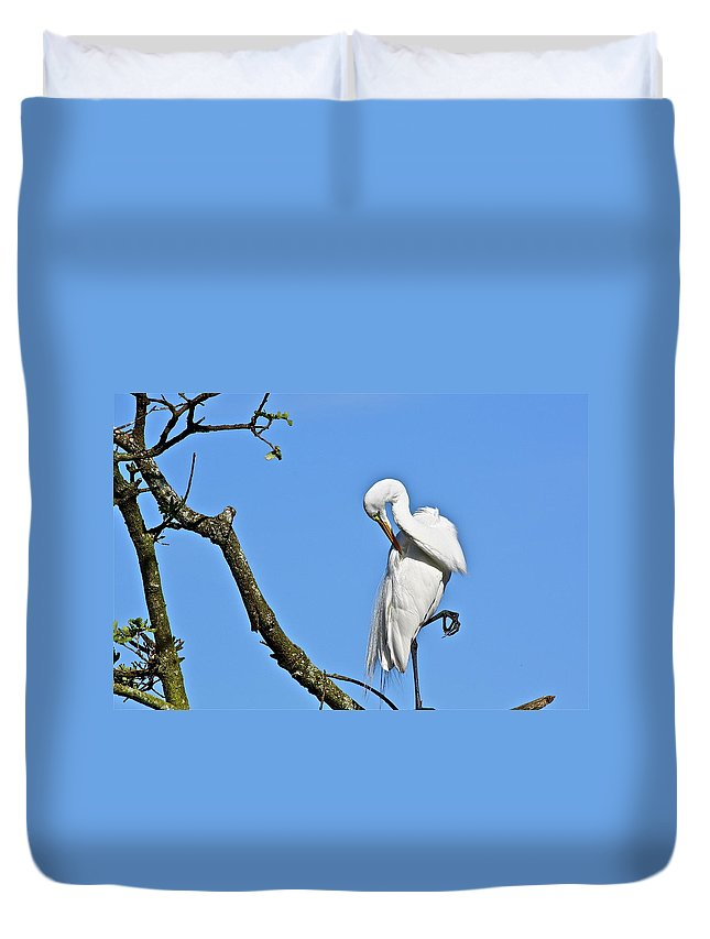 Bird Duvet Cover featuring the photograph Balancing Act by Diana Hatcher