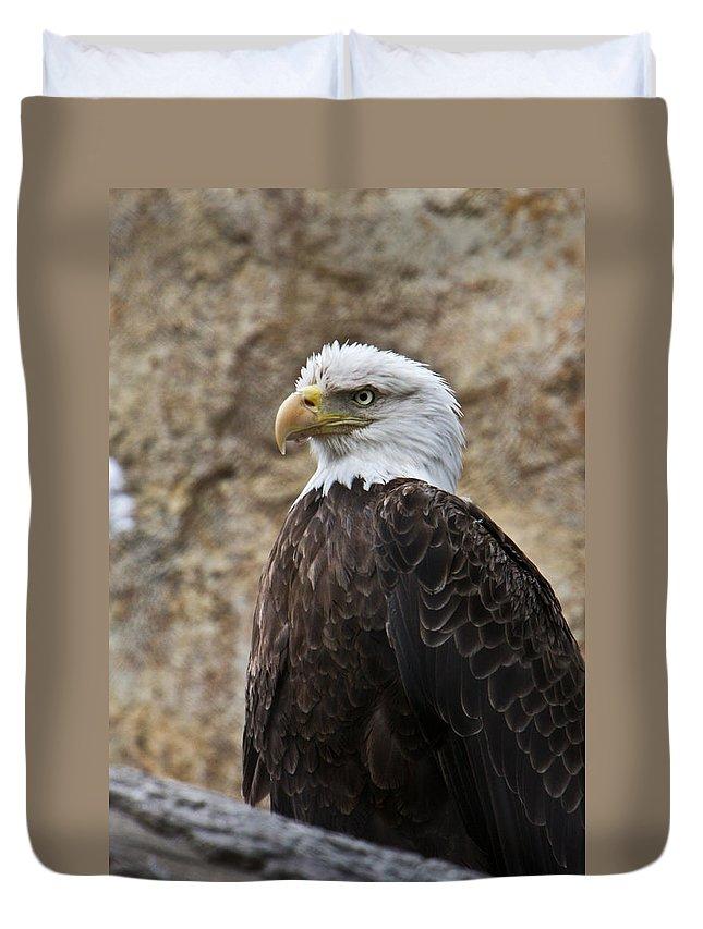 Bald Duvet Cover featuring the photograph Bald Eagle - Portrait 2 by Douglas Barnett