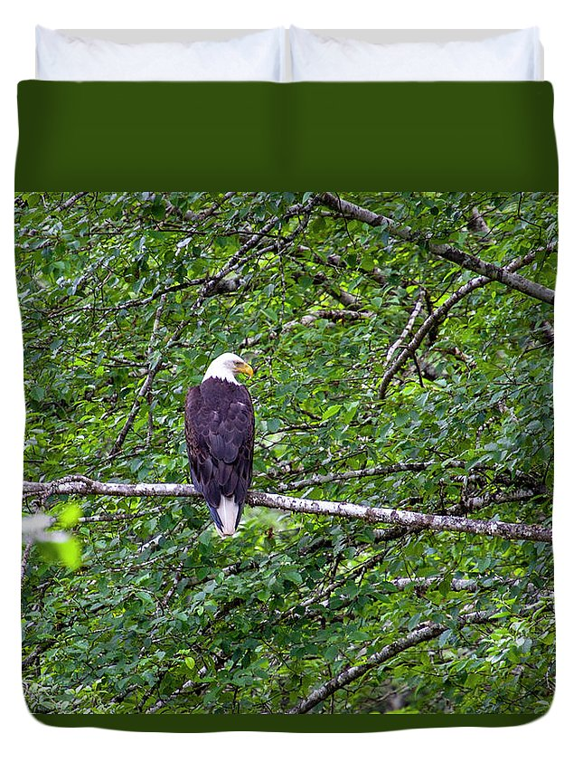 Bald Eagle Duvet Cover featuring the photograph Bald Eagle 1 by Anthony Jones