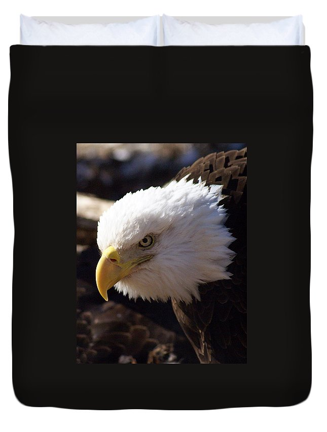 Birds Duvet Cover featuring the photograph Bald Eagle 2 by Marty Koch