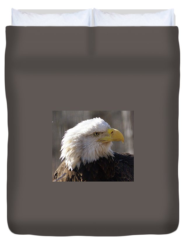Birds Duvet Cover featuring the photograph Bald Eagle 3 by Marty Koch