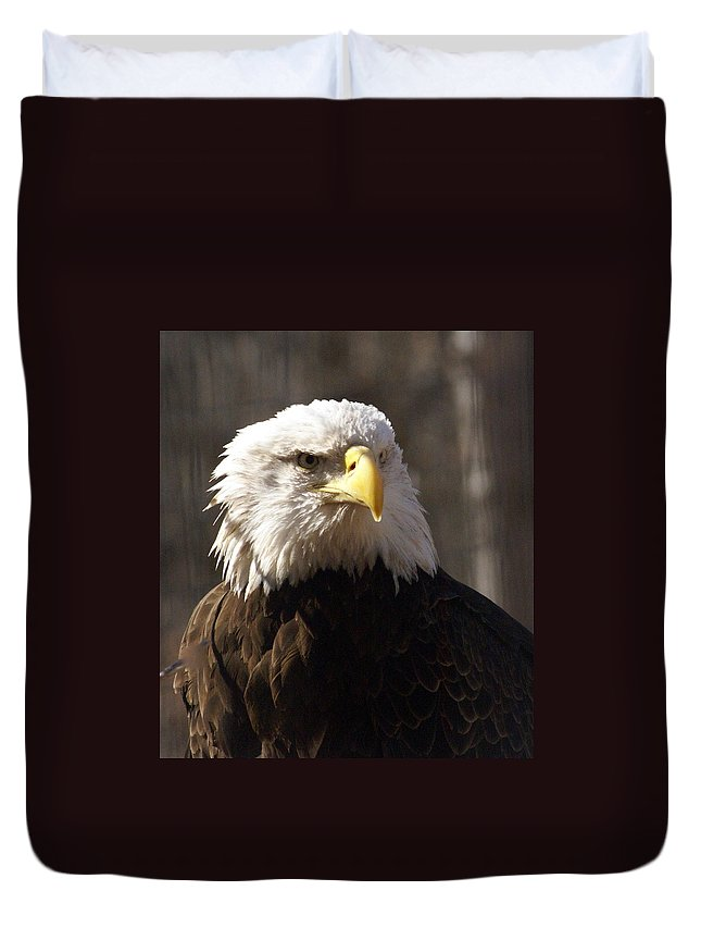 Birds Duvet Cover featuring the photograph Bald Eagle 5 by Marty Koch