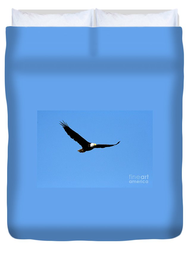 Eagle Duvet Cover featuring the photograph Bald Eagle II by Thomas Marchessault