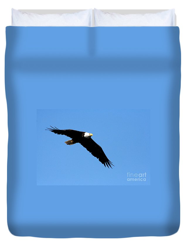 Eagle Duvet Cover featuring the photograph Bald Eagle IIi by Thomas Marchessault