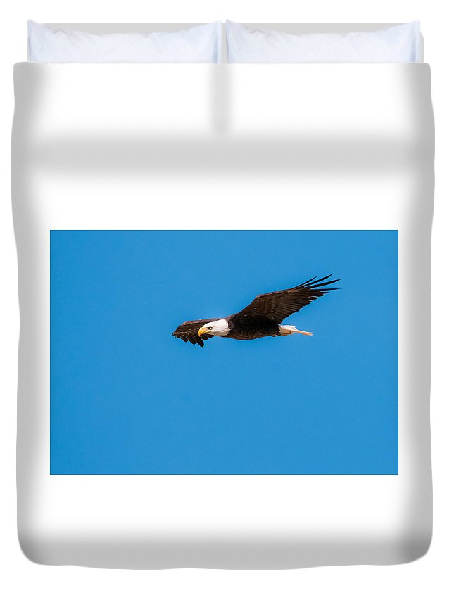Bald Eagle Duvet Cover featuring the photograph Bald Eagle by Tam Ryan