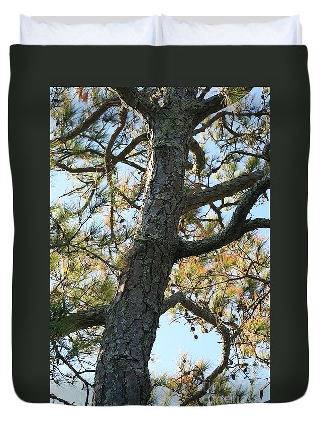 Tree Duvet Cover featuring the photograph Bald Head Tree by Nadine Rippelmeyer