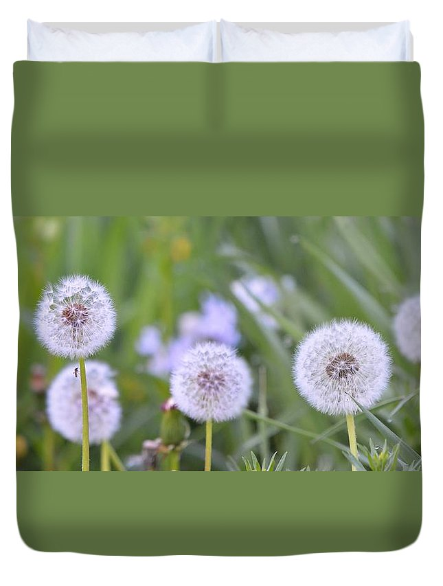 Seed Duvet Cover featuring the photograph Balls Of Seed by Bonfire Photography