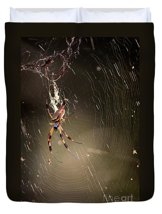 Banana Spider Duvet Cover featuring the photograph Banana Spider by Matt Suess