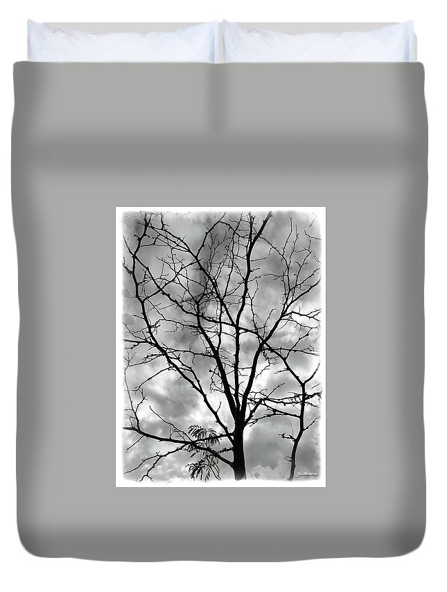 Tree Duvet Cover featuring the photograph Bare Til Spring by Joan Minchak