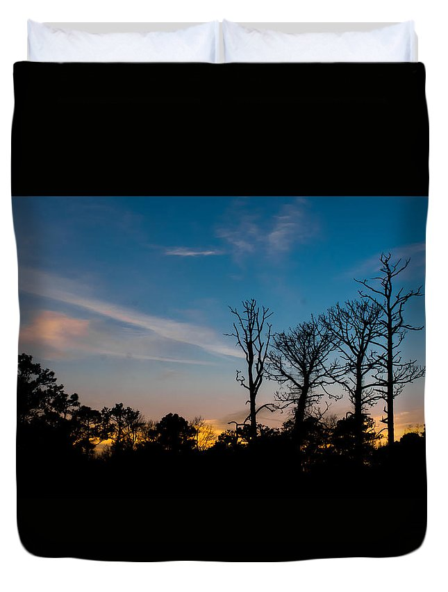 Trees Duvet Cover featuring the photograph Bare Trees by Kenneth Freyer