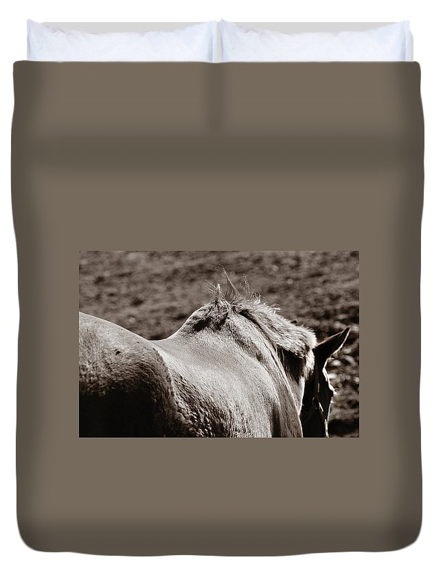 Horse Duvet Cover featuring the photograph Bareback by Angela Rath