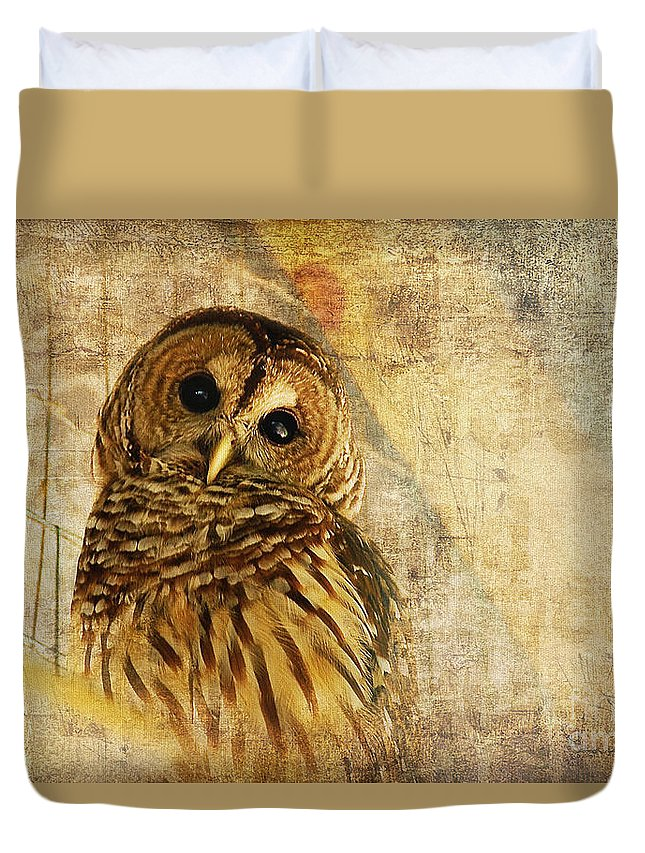 Owl Duvet Cover featuring the photograph Barred Owl by Lois Bryan