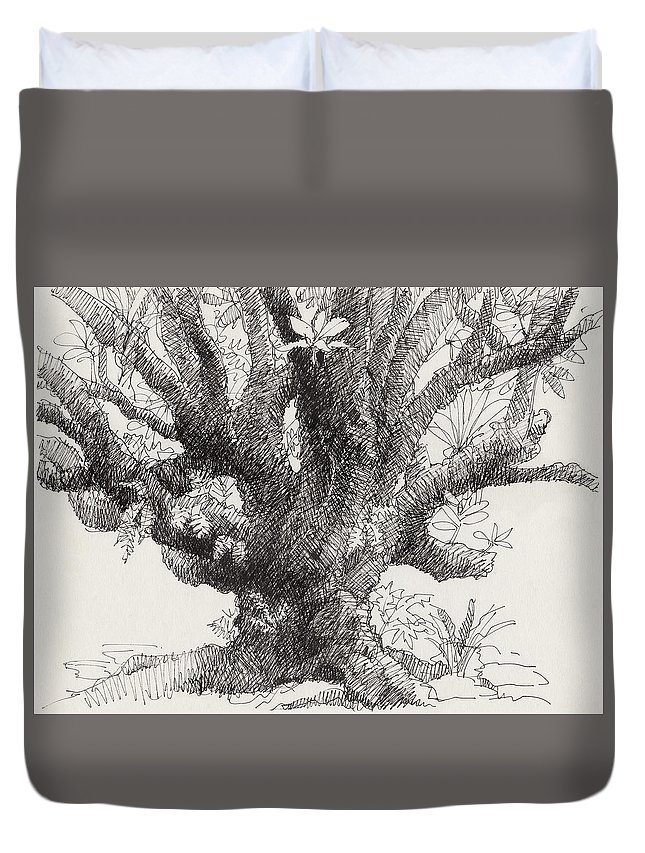 Plant Duvet Cover featuring the drawing Barringtonia Tree by Judith Kunzle
