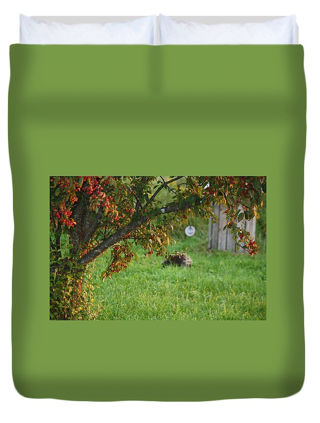 Vermont Duvet Cover featuring the photograph Barton Backyard by Donna Walsh