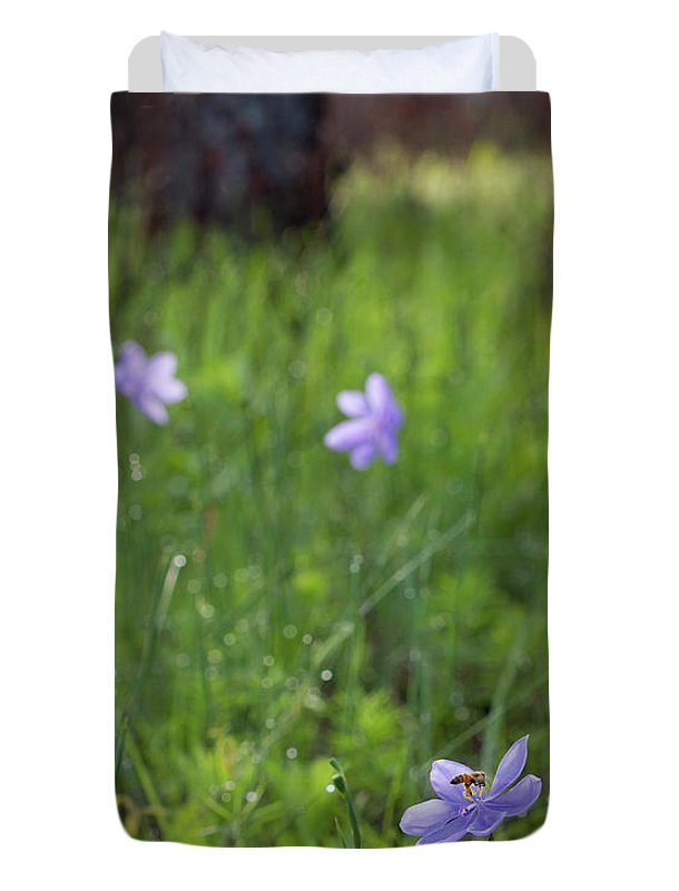 Batram's Ixia And Bee Duvet Cover featuring the photograph Bartram's Ixia And Bee #3 by Paul Rebmann