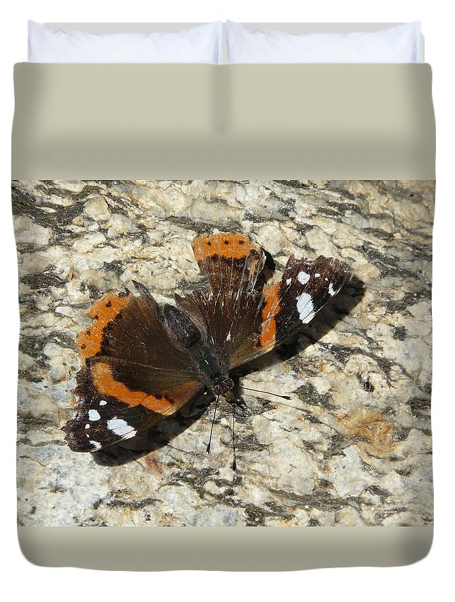 Butterfly Duvet Cover featuring the photograph Battered Butterfly by Valerie Ornstein