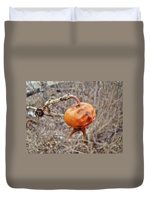Rose Duvet Cover featuring the photograph Beach Rose Hip - Rosa Rugosa by Mother Nature
