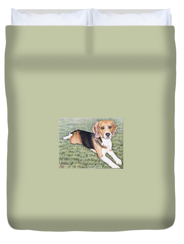 Dog Duvet Cover featuring the drawing Beagle by Nicole Zeug