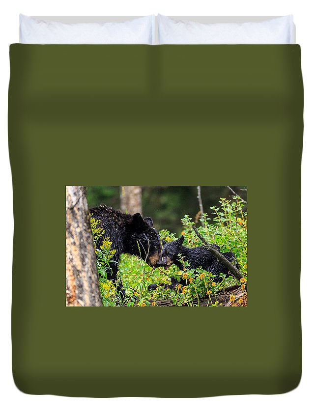 Black Bear Duvet Cover featuring the photograph Bear Kisses by Greg Wagstaff