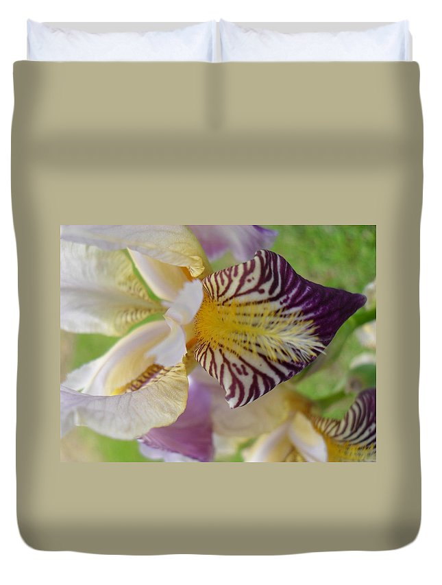 Iris Duvet Cover featuring the photograph Bearded Iris by Peggy King
