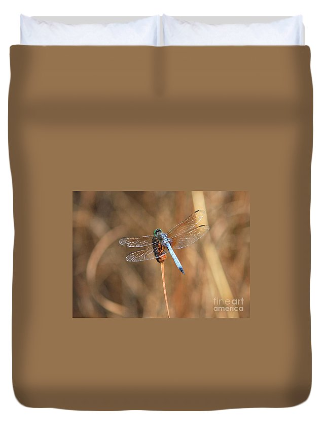Dragonfly Duvet Cover featuring the photograph Beautiful Broken Wing by Carol Groenen