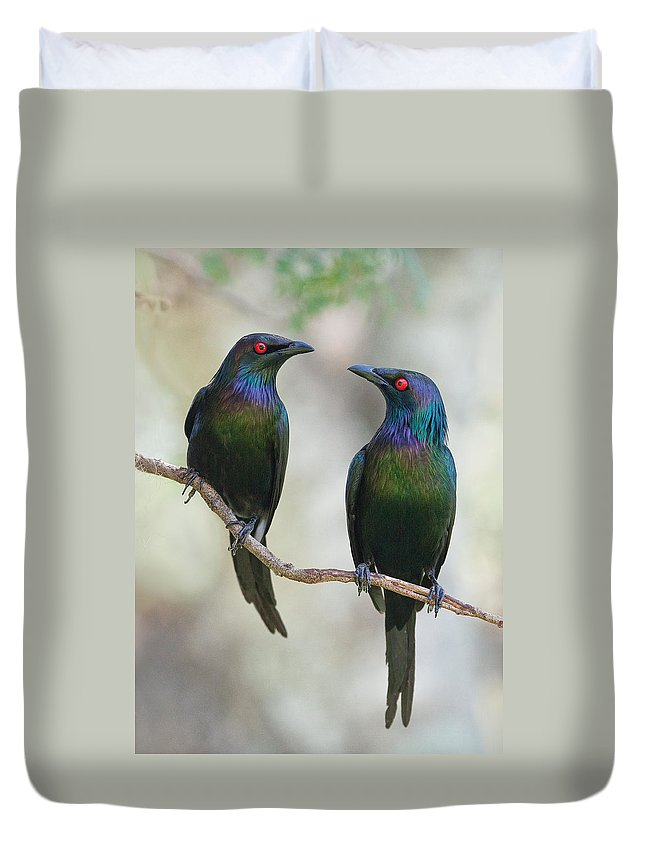 Starlings Duvet Covers