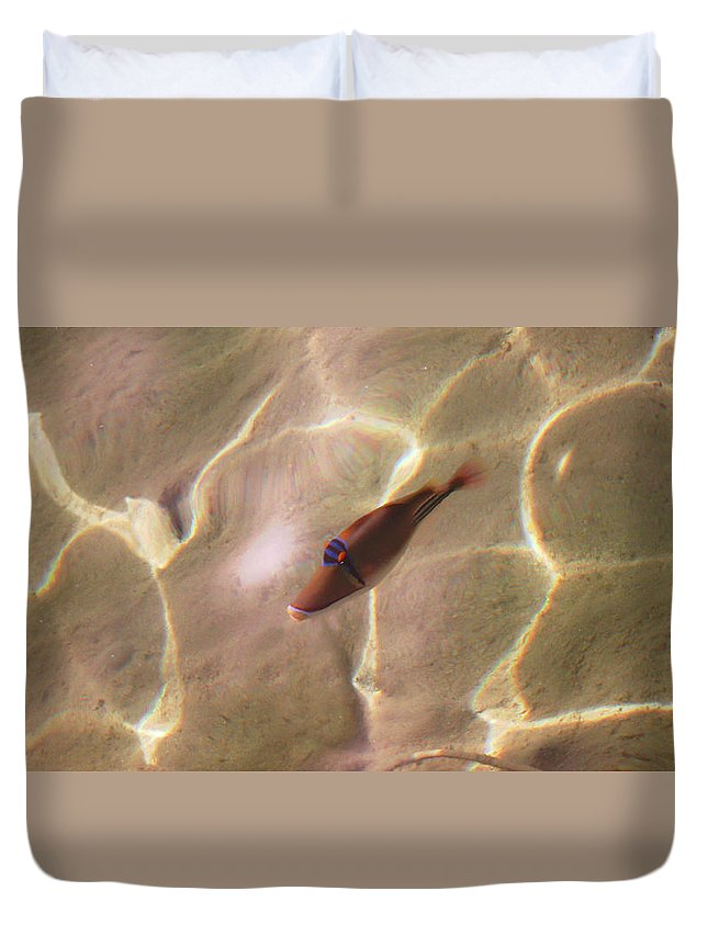 Beautiful Fish Duvet Cover featuring the photograph Beautiful Fish by Nat Air Craft