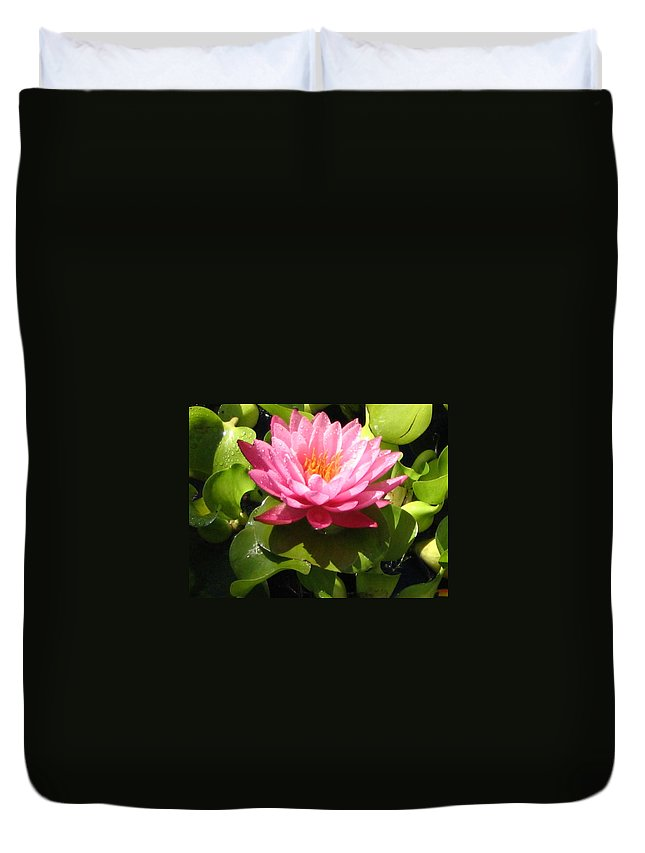 Nature Duvet Cover featuring the photograph Beautiful by Line Gagne
