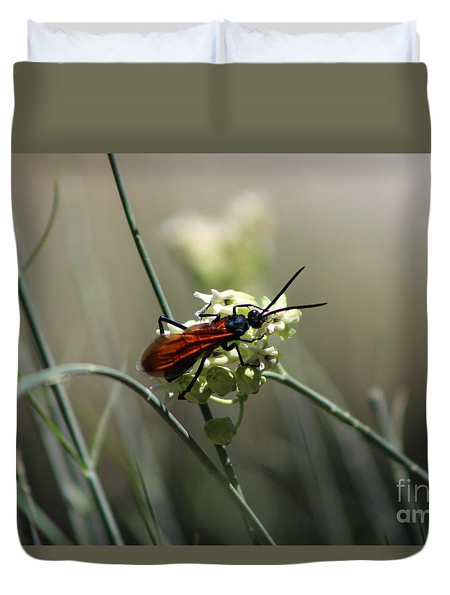 Sunnyland Duvet Cover featuring the photograph Beautiful Little Nightmare by Colleen Cornelius