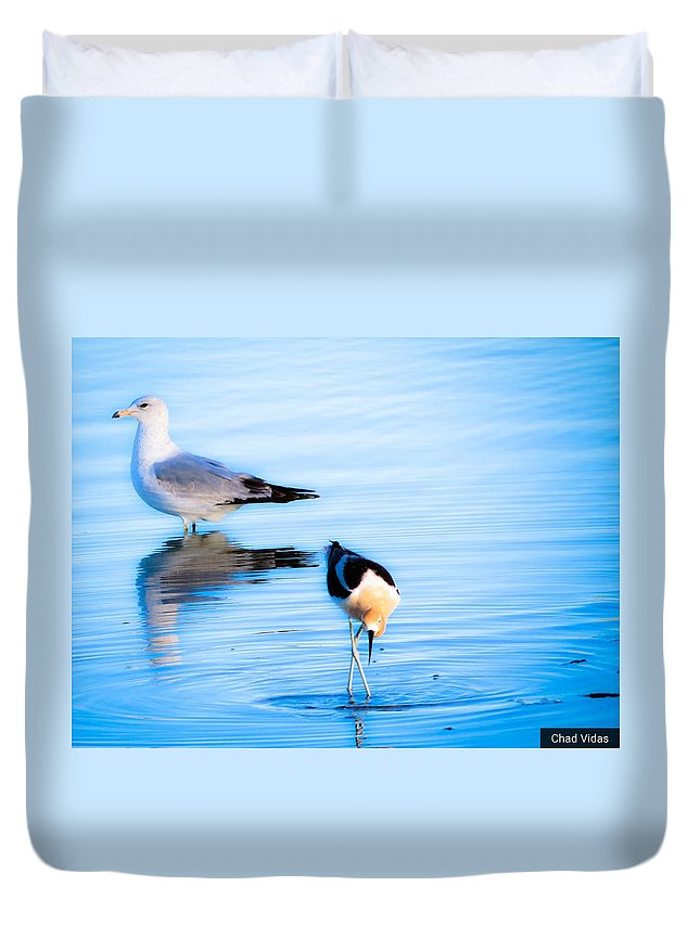 Seagull Duvet Cover featuring the photograph Beautiful Moments In Time by Chad Vidas
