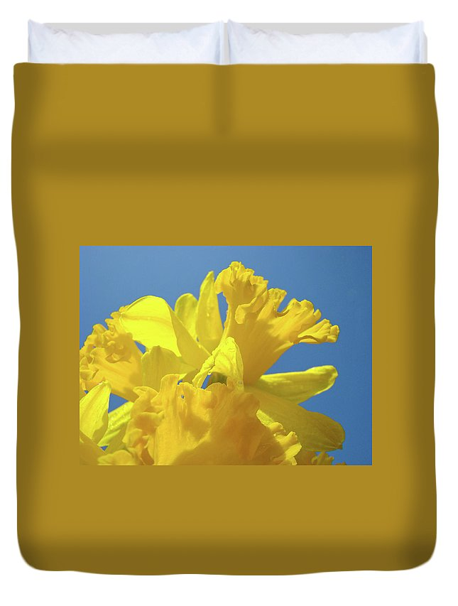 Nature Duvet Cover featuring the photograph Beautiful Spring Daffodil Bouquet Flowers Blue Sky Art Prints Baslee Troutman by Baslee Troutman