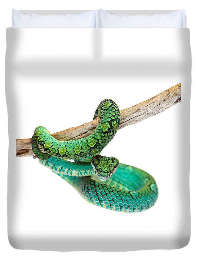 Viper Duvet Covers