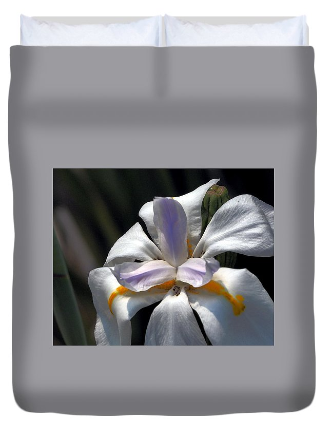 Botanical Duvet Cover featuring the photograph Beautiful White Day Lily by Richard Thomas