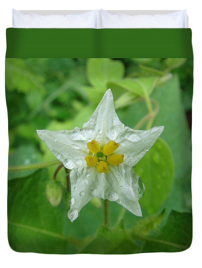 Green Flower White Water Drop Duvet Cover featuring the photograph Beauty In All Sizes by Luciana Seymour