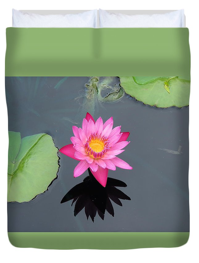 Lily Pad Duvet Cover featuring the photograph Beauty In Water by Creations by Shaunna Lynn