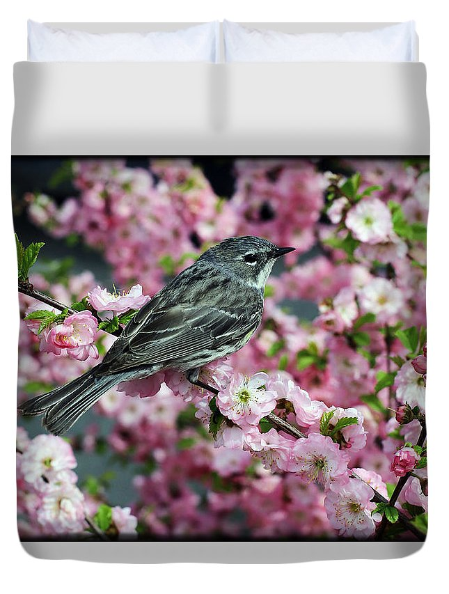 Bird Duvet Cover featuring the photograph Beauty Rest by Perri Kelly