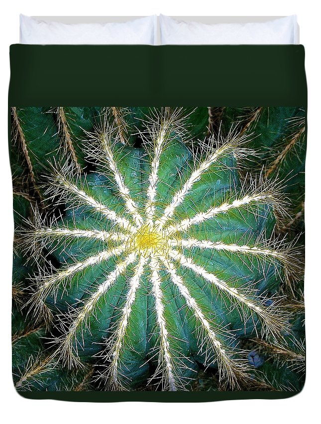 Cactus Duvet Cover featuring the photograph Beauty To The Point by Danielle Sigmon