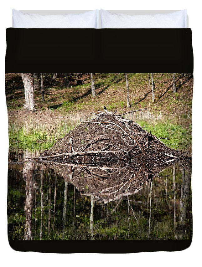 Nature Duvet Cover featuring the photograph Beaver Lodge Reflection by Jeff Severson