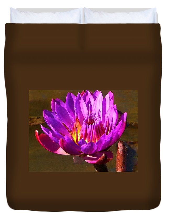 Water Lily Duvet Cover featuring the photograph Bee Attractor by John Lautermilch