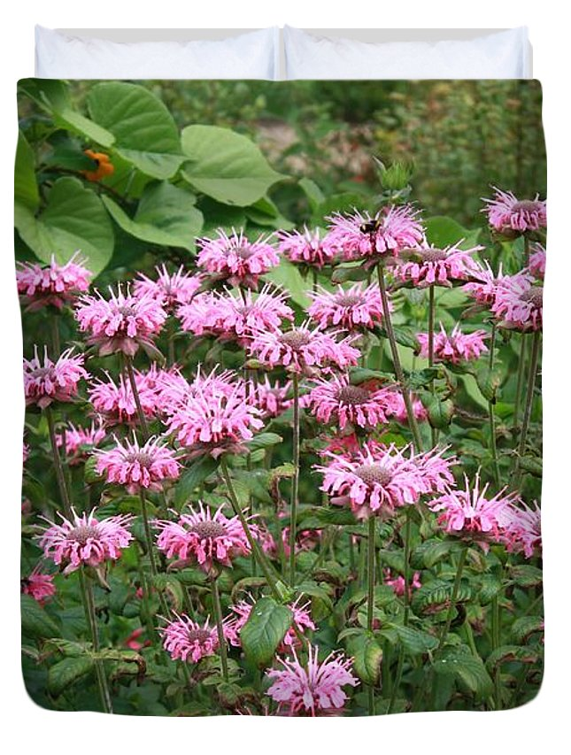 Flower Garden Duvet Cover featuring the photograph Bee Balm Garden by Carol Groenen