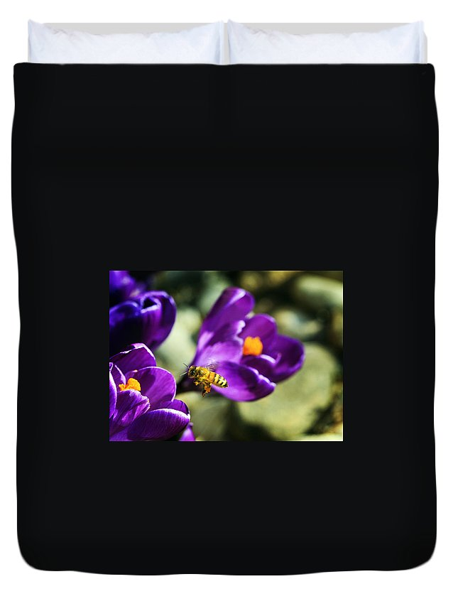 Bee Duvet Cover featuring the photograph Bee In Flight by Marilyn Hunt