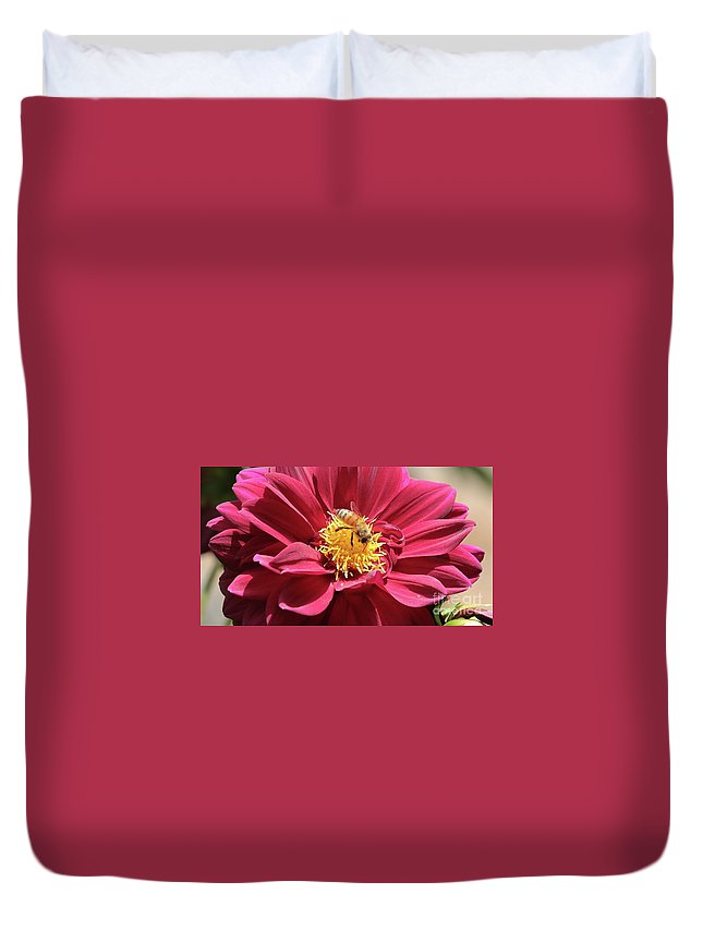 Dahlia Duvet Cover featuring the photograph Bee On Beautiful Dahlia by Carol Groenen