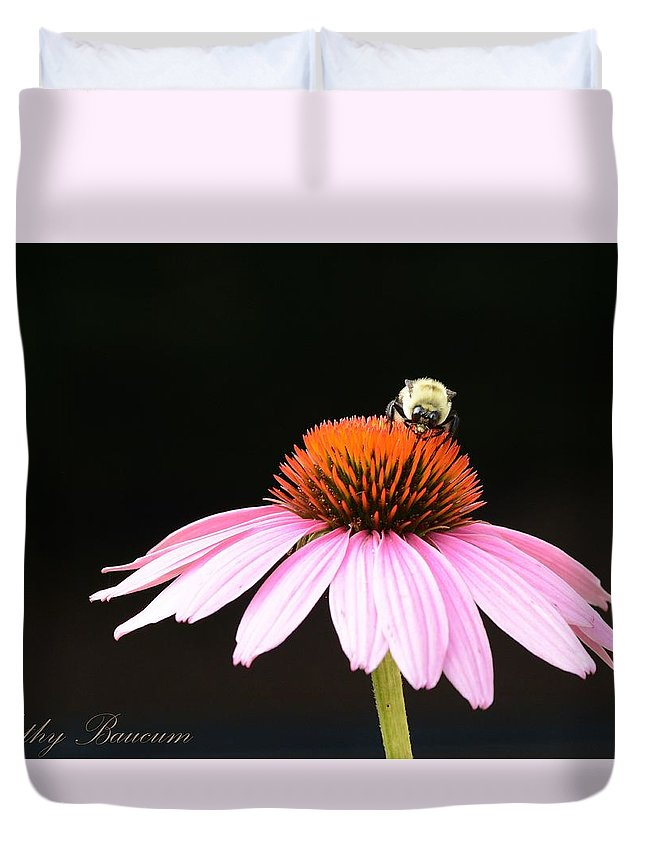 Flower Bee Coneflower Purple Nature Duvet Cover featuring the photograph Bee On Coneflower 2 by Kathy Baucum