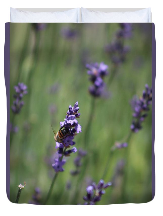 Deep Purple Lavender Duvet Cover featuring the photograph Bee on Deep Purple Lavender Spike by Colleen Cornelius